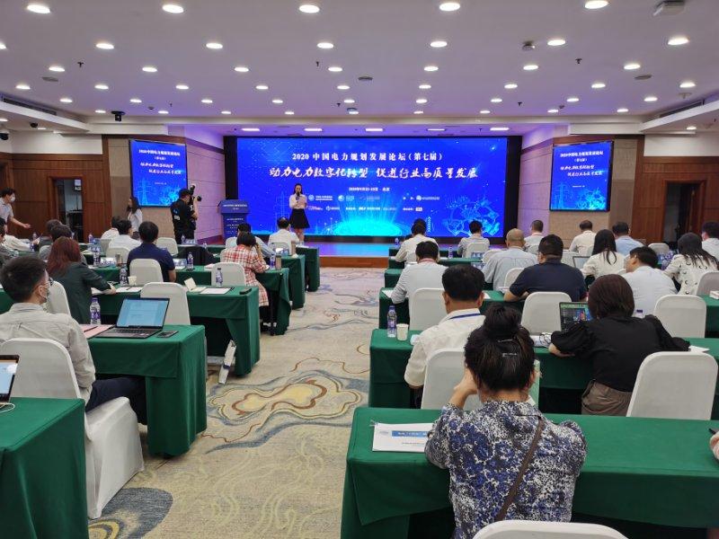 中电新闻网:2020中国电力规划发展论坛召开