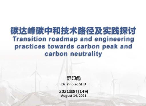 中国华能集团有限公司 舒印彪:碳达峰碳中和技术路径及实践探讨