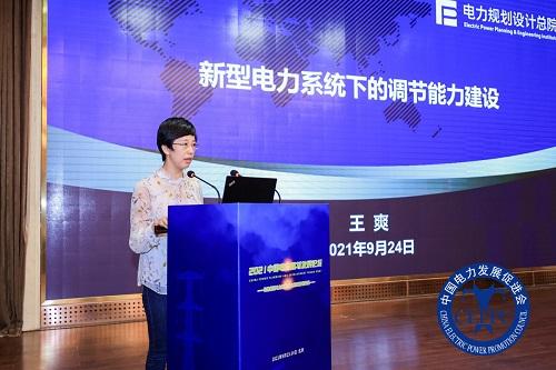 王爽:新型電力系統下的調節能力建設